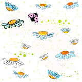 Daisy field and lady bird spring pattern vector background. Daisy field and lady bird spring pattern vector Royalty Free Stock Images