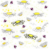 Daisy field and lady bird spring pattern vector background. Daisy field and lady bird spring pattern vector Royalty Free Stock Image