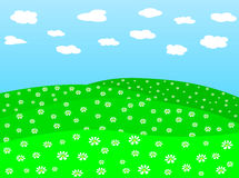 Daisy field vector 2 Royalty Free Stock Images