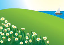 Daisy field - vector Royalty Free Stock Photo