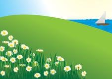 Daisy field - vector. Daisy field by the lake, vector Royalty Free Stock Photo
