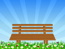 Daisy field and wooden bench Royalty Free Stock Photo
