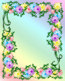 Daisy Floral Invitation Border Royalty Free Stock Images