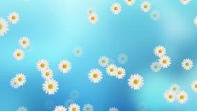 Daisy Flower Animation ilustração do vetor