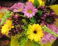Daisy Flower Bouquet colorida lindo imagens de stock royalty free