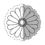 Daisy flower decoration cut line Royalty Free Stock Images
