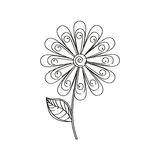 Daisy flower decoration sketch Stock Photo