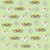 Daisy flower field pattern vector background. Daisy flower field pattern vector Stock Photography