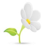 Daisy Flower Icon bianca Immagini Stock