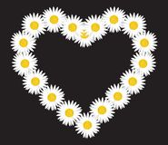 Daisy flower letter. Vector illustration of the Daisy flower letter royalty free illustration
