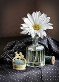Daisy flower, needles and spool of thread Stock Image