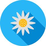 Daisy. Flower, petals icon vector image. Can also be used for spring. Suitable for use on web apps, mobile apps and print media royalty free illustration