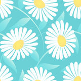 Daisy flower in a seamless pattern Royalty Free Stock Photography