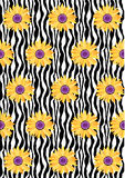Daisy Flower Zebra Pattern Fotografie Stock Libere da Diritti