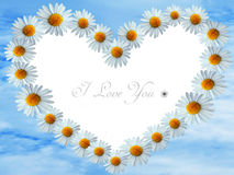 Daisy flowers heart on heaven background Stock Images