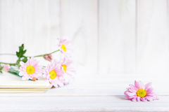 Free Daisy Flowers On The White Table Stock Photo - 77354080