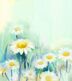 Oil painting white Daisy flowers in field. Oil painting Daisy flowers in field. Daisy in soft color on green-blue color background. Spring flower nature Stock Photo