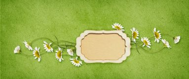 Daisy flowers and a paper frame with copy space. In a line arrangement on green craft background. Flat lay. Top view Royalty Free Stock Images