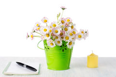 Daisy flowers in a pot with notebook Stock Image