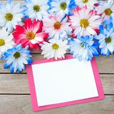 Daisy Flowers in Red White and Blue Colors with Party Invitation Card Laying on Rustic Board Table with room or space for your wor. Ds, text or copy. It`s flat royalty free stock photography