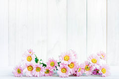 Daisy flowers on the white table Royalty Free Stock Photo