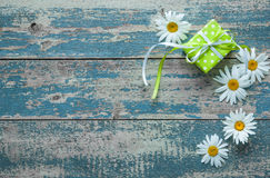 Daisy flowers on wooden background Stock Images