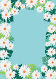 Daisy frame on blue background  Stock Images