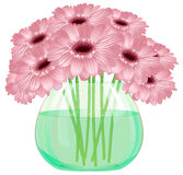 Daisy gerbera flower bouquet in glass vase Stock Photography