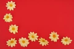 daisy granic Zdjęcia Royalty Free
