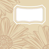 Daisy greeting card. Stock Image