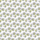 Daisy hand drawn pattern on white background . Vector illustration. Daisy flowers yellow and green hand drawn seamless pattern on white background . Vector Stock Photography