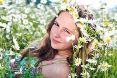 Daisy happiness Stock Photo