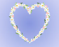 Daisy heart Stock Image