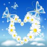 Daisy heart and butterflies stock illustration
