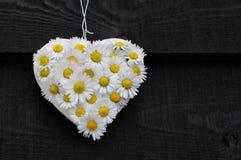 Daisy Heart en negro Foto de archivo libre de regalías