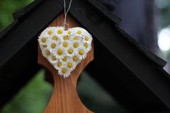 Daisy Heart Stock Photos