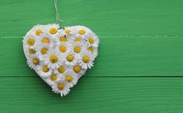 Daisy Heart su verde Fotografia Stock Libera da Diritti