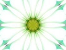 Daisy Kalaidescope. This was a pictured of a painted daisy edited with PSP8 Stock Photos