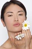 Daisy Kisses Stock Afbeeldingen