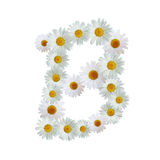 Daisy Letter B Stock Images