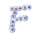 Daisy Letter blu F Immagine Stock