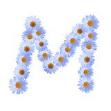 Daisy Letter blu m. Immagine Stock