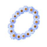 Daisy Letter blu O Fotografia Stock Libera da Diritti