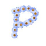 Daisy Letter blu P Fotografia Stock Libera da Diritti