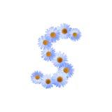 Daisy Letter blu S Fotografie Stock Libere da Diritti