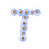 Daisy Letter blu T Fotografia Stock