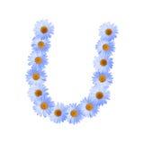Daisy Letter blu U Fotografia Stock Libera da Diritti