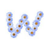 Daisy Letter blu W Fotografia Stock