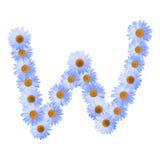 Daisy Letter blu W Immagini Stock Libere da Diritti