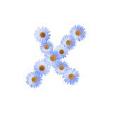 Daisy Letter blu X Fotografia Stock Libera da Diritti